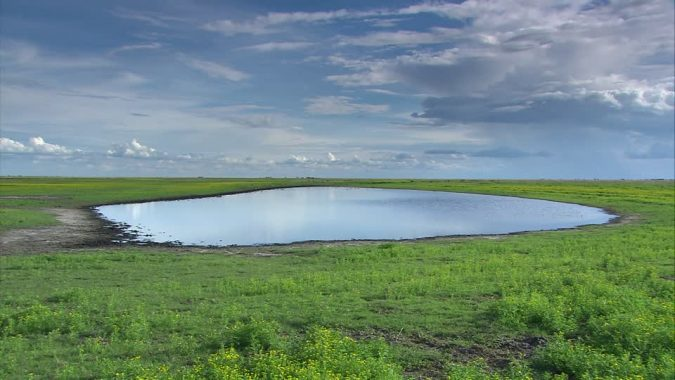 wildlife-liuwa-plain-national-park-zambia-675x380 20 Places to Explore for an Enchanting Holiday