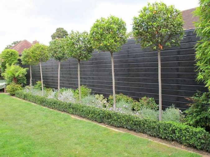Fencing-675x506 Exclusive Tips To Transform Your Garden on a Budget