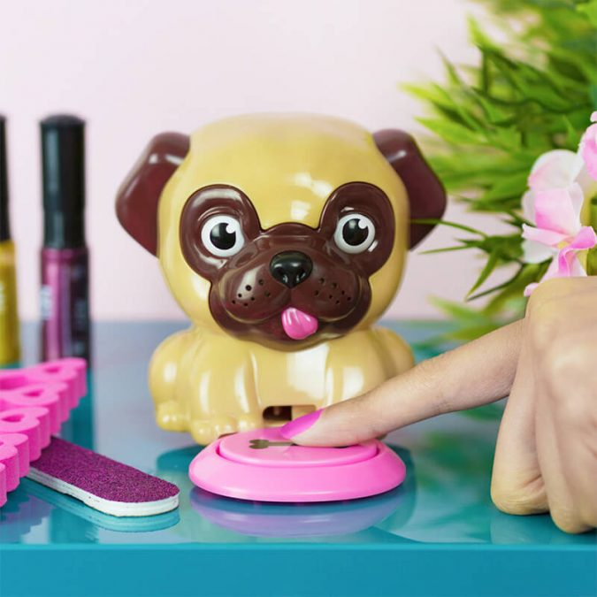 pug-675x675 Top 7 Ideas for Extraordinary Birthday Gifts