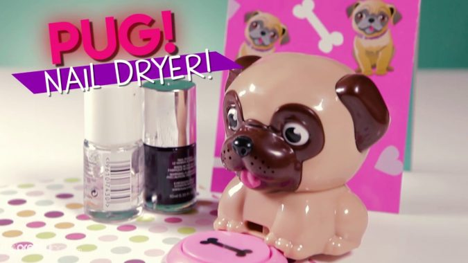 puggg-675x380 Top 7 Ideas for Extraordinary Birthday Gifts