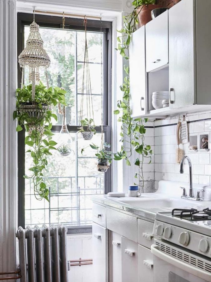 white-kitchen-with-plants-675x900 Top 10 Best White Bright Kitchen Design Ideas
