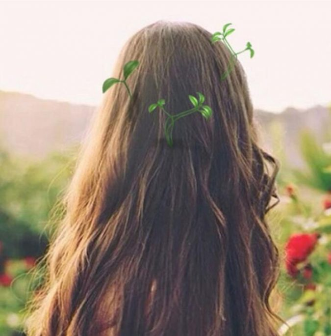 plants-hair-accessories-675x684 Top 10 Unusual Hair Products to Use in 2020
