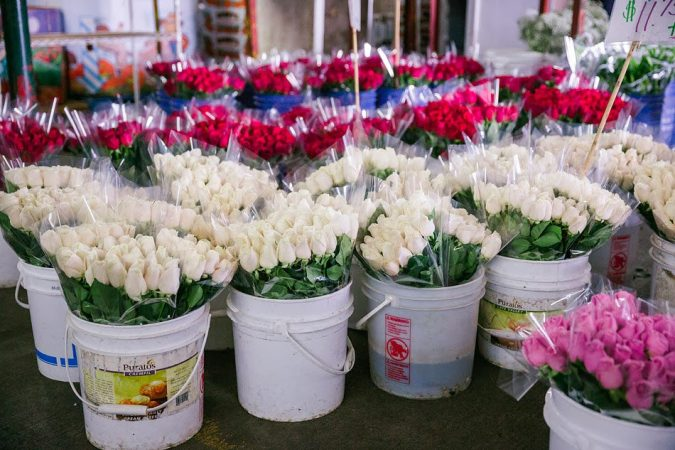 LA-floral-destrict-675x450 Top 10 Cool & Unusual Things to Do in Los Angeles