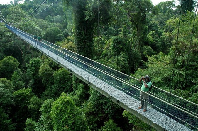 The-Bukit-Timah-Nature-Reserve-Asian-travel-destinations-675x449 The 12 Most Relaxing and Meditative Holiday Destinations in Asia