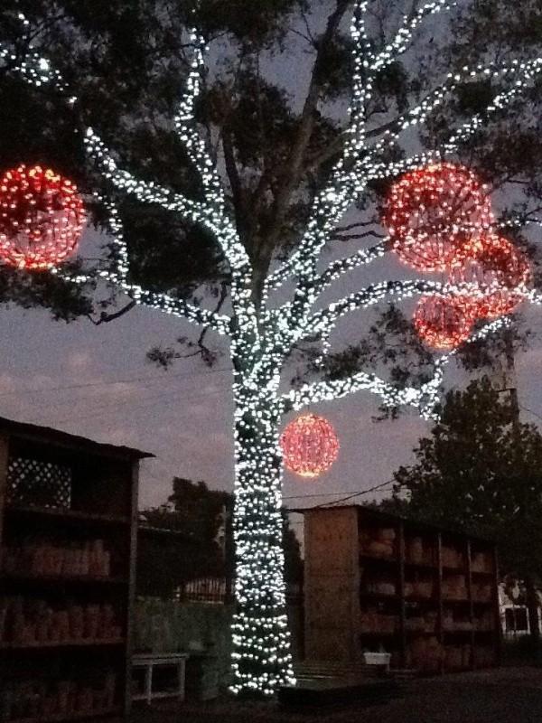 outdoor-Christmas-light-decoration-ideas-109 98+ Magical Christmas Light Decoration Ideas for Your Yard