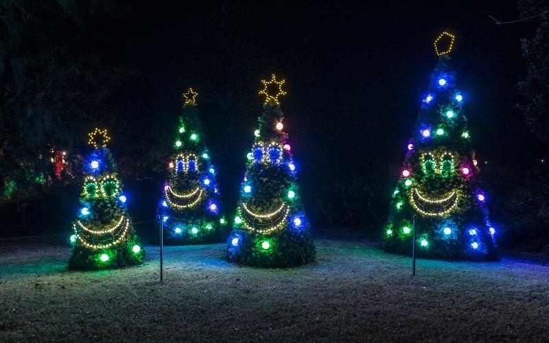 outdoor-Christmas-light-decoration-ideas-137 98+ Magical Christmas Light Decoration Ideas for Your Yard