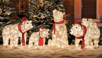 Photo of 98+ Magical Christmas Light Decoration Ideas for Your Yard