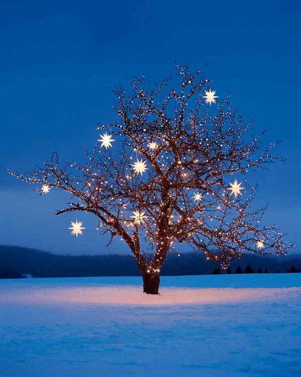 outdoor-Christmas-light-decoration-ideas-83 98+ Magical Christmas Light Decoration Ideas for Your Yard