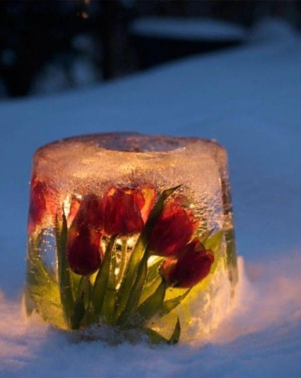 outdoor-Christmas-light-decoration-ideas-84 98+ Magical Christmas Light Decoration Ideas for Your Yard