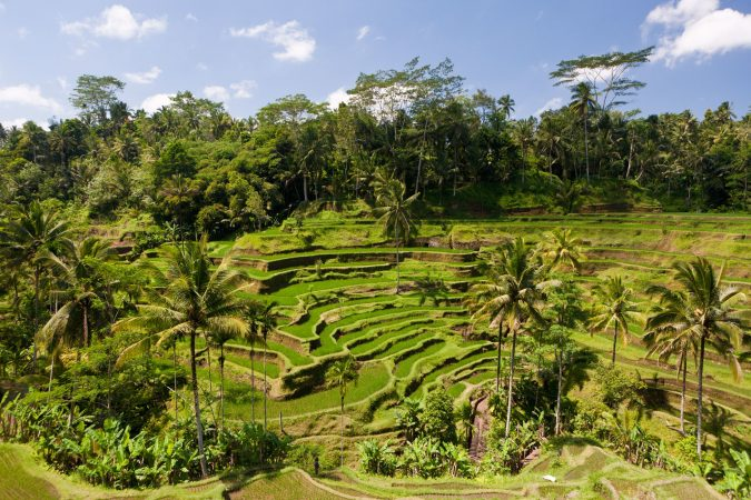 tegalalang-rice-terrace-ubud-Asian-travel-destination-675x450 The 12 Most Relaxing and Meditative Holiday Destinations in Asia