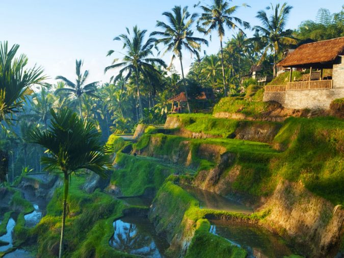 ubud-Asian-travel-destination-675x506 The 12 Most Relaxing and Meditative Holiday Destinations in Asia