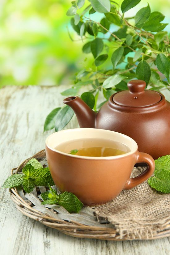 herbal-tea Complete Guide to Guest Blogging and Outreach