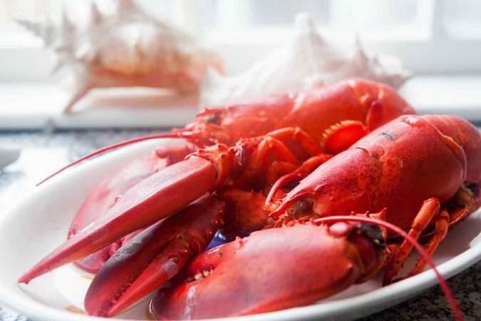 lobster-3-675x450 Top 10 Surprising Health Benefits of Lobster
