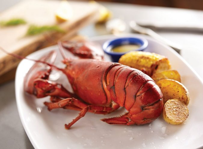 red-lobster-Maine-Lobster-675x494 Top 10 Surprising Health Benefits of Lobster