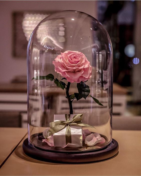 flowers-can-make-relationships-go-strong Fall in Love with Beauty - 7 Reasons Make Flowers The Most Precious Gifts