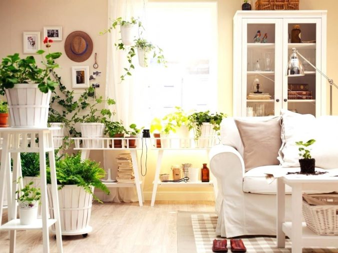 indoor-plants-decor-675x506 5 Ways to Create a Relaxing Atmosphere