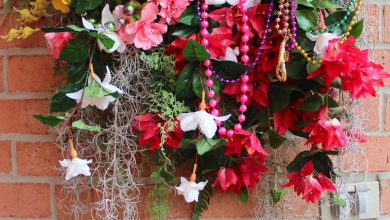 Photo of Fat Tuesday is Coming! 11 Classy Mardis Gras Wreaths for Your Front Door