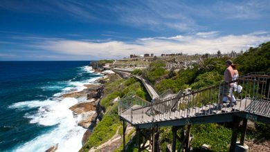 Photo of 4 Must-Try Things to Do in North Sydney