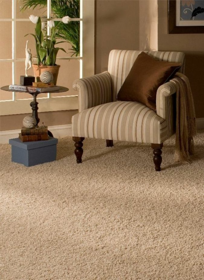 wool-carpet-cleaning-classic-living-room-furniture-675x929 Top 10 Innovative Flooring For Your New House