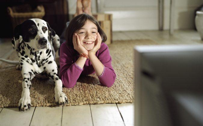 dog-watching-tv-675x420 7 Fun Ways To Celebrate Your Dog's Birthday
