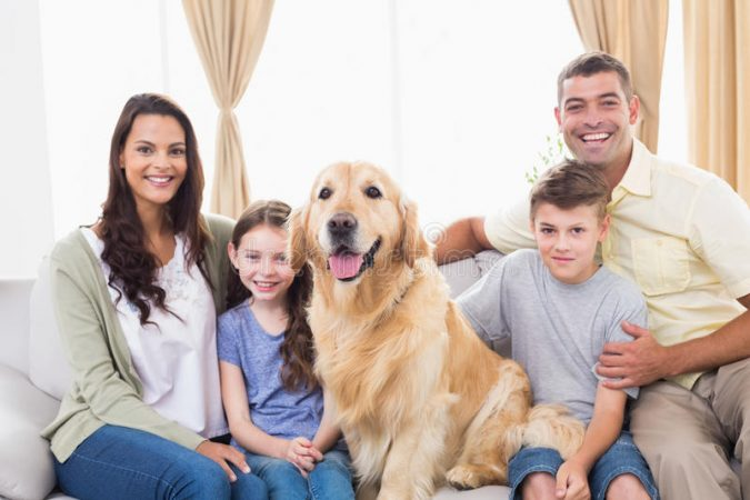 happy-family-sitting-golden-retriever-sofa-portrait-home-50493491-675x450 5 Important Considerations to Make Before Buying Your Wedding Dress