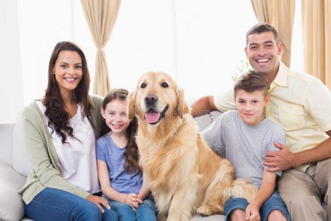 happy-family-sitting-golden-retriever-sofa-portrait-home-50493491-675x450 7 Fun Ways To Celebrate Your Dog's Birthday