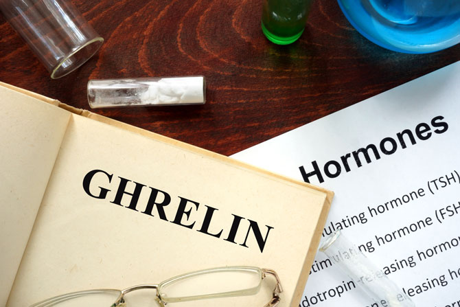 Ghrelin Top 10 Hormones That Help You Lose Weight