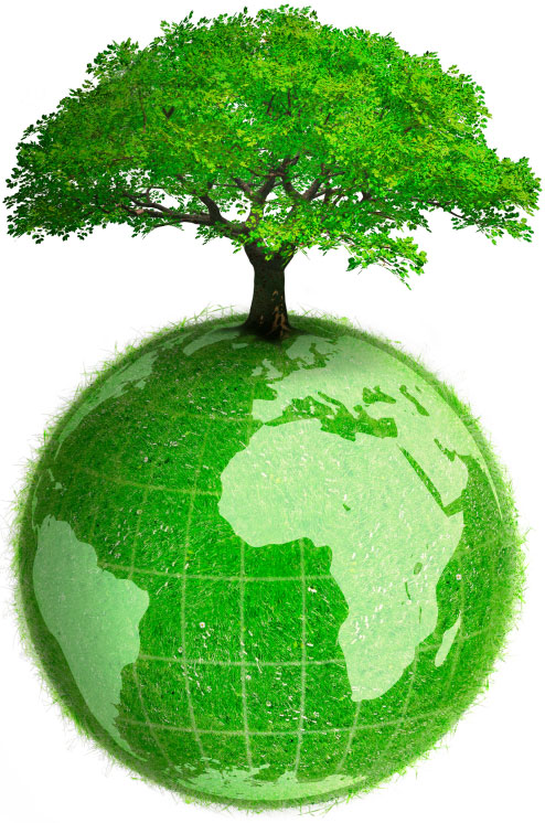 Plant-a-Tree Top 10 Ways to Make a Difference in the World