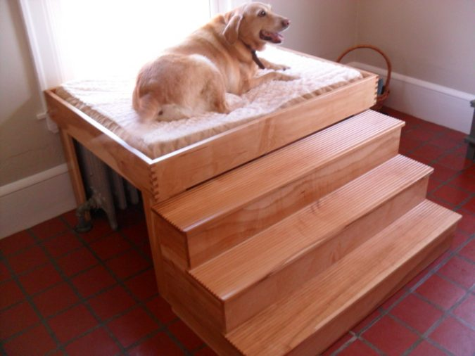 The-size-675x506 Buying Tips on How to Choose a Comfortable Bed for Aging Pets