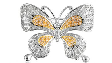 Photo of 13 Stylish Diamond Brooches and Pins Designs For Women