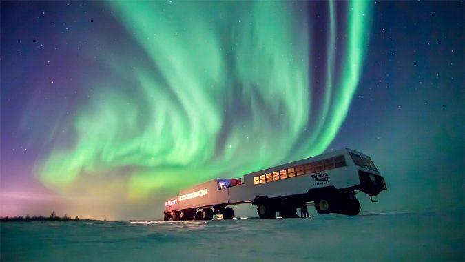Polar-Bears-of-Churchill-Manitoba-675x380 World's Rarest Wildlife Places