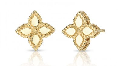 Photo of Best 18 Roberto Coin Earrings Designs
