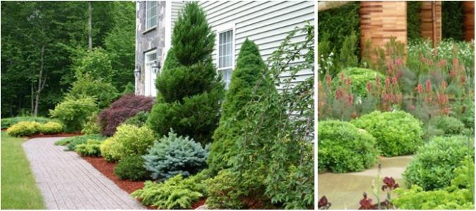 home-gardens-shrubs-675x299 10 Garden Trends around the World that You Haven't Heard of