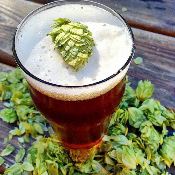 India-Pale-Ales-IPA.-675x675 5 Best Fall Beers to Try this Cold-Weather Season