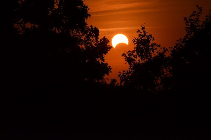 partial-solar-eclipse-1-675x448 Top 10 Predictions Made By Astrologers