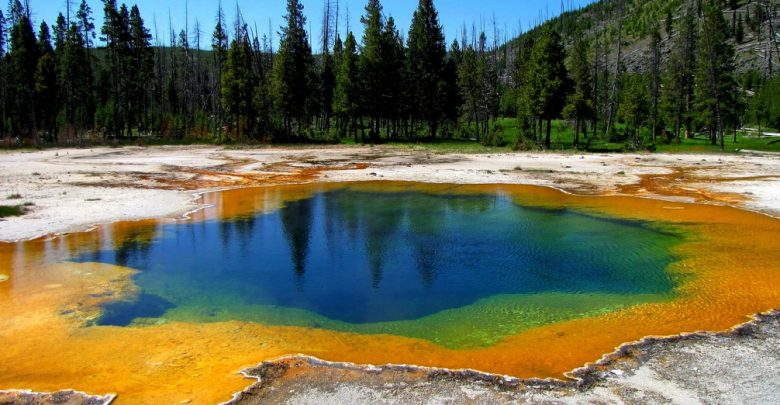 Photo of Top 7 Best Places to Visit while Study in the USA