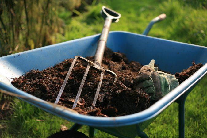 gardening-675x450 Creating an Environmentally Friendly Garden through Xeriscaping