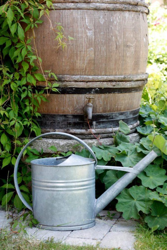 gardening-Colling-water-in-a-rainbarrel-675x1012 Creating an Environmentally Friendly Garden through Xeriscaping