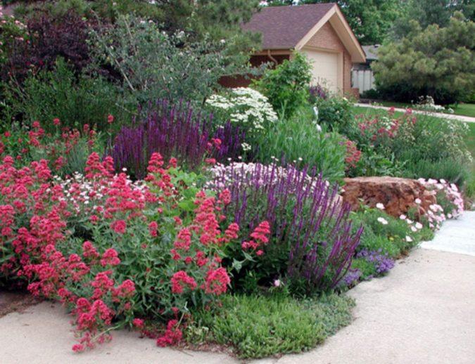 home-garden-2-675x518 Creating an Environmentally Friendly Garden through Xeriscaping