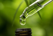 Photo of Here's Why You Need CBD Oil For Pain Relief?