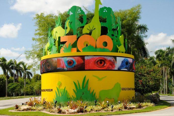 Zoo-Miami-675x452 Top 6 Outdoor Activities Miami Has to Offer