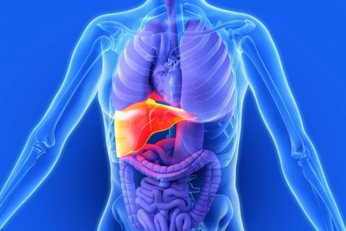 liver-damage.-675x450 Top 10 Food Supplements That Can Ruin the Liver