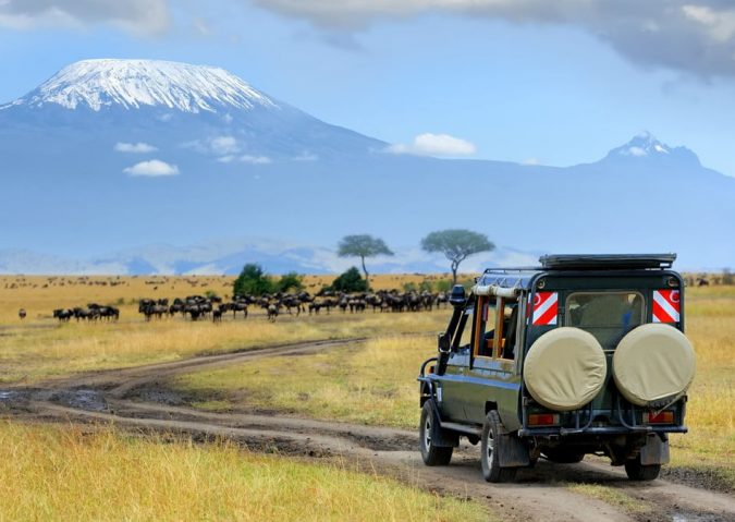 african-safari-travel-675x479 6 Types of Outdoor Travel Adventures to Experience
