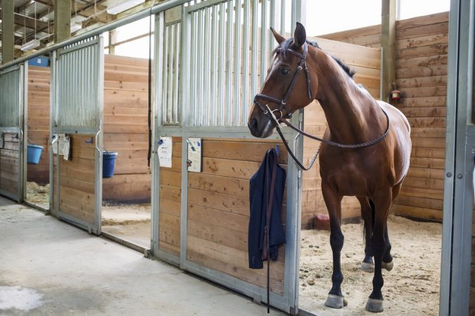 horse-stable-675x450 3 Awesome Tips You Need for Your Dream Horse Stable