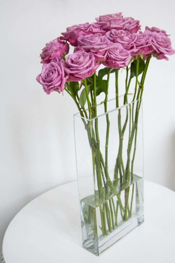 pink-roses-in-vase-675x1013 How to Make Cut Flowers Last Longer?