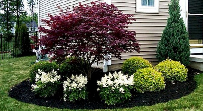 Plant-a-lot-of-flowers-675x368 Yard Care Tips You Don't Want to Miss