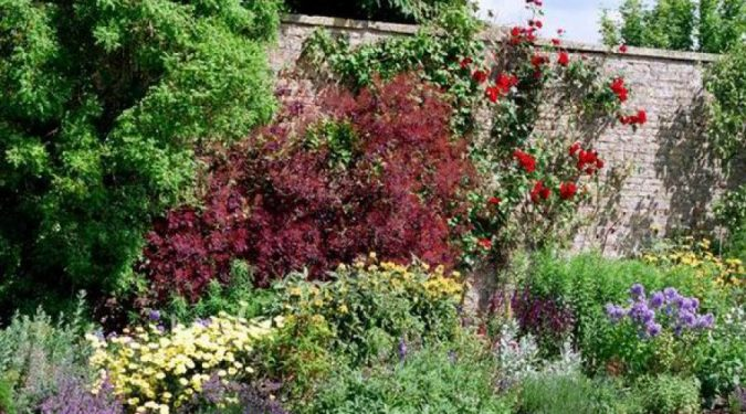 Planting-flowers-675x375 Yard Care Tips You Don't Want to Miss