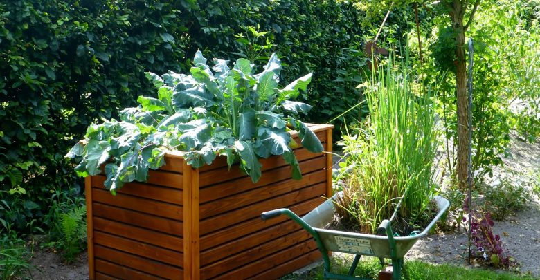 Photo of 5 Landscaping Trends to Consider