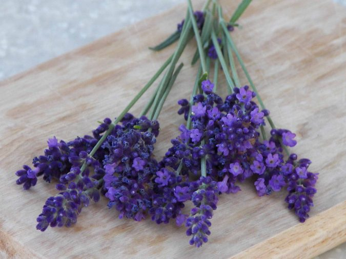 lavender-1-675x506 Top 15 Creative Mother's Day Gift Ideas
