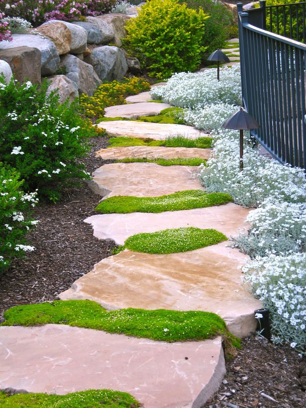 pathways-in-high-traffic Yard Care Tips You Don't Want to Miss